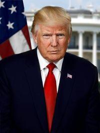 361px-donald_trump_president-elect_portrait